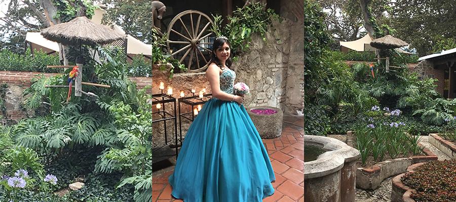 Casa Santa Domingo Une jeune fille fête ses 15 ans. Un perroquet fait le beau.