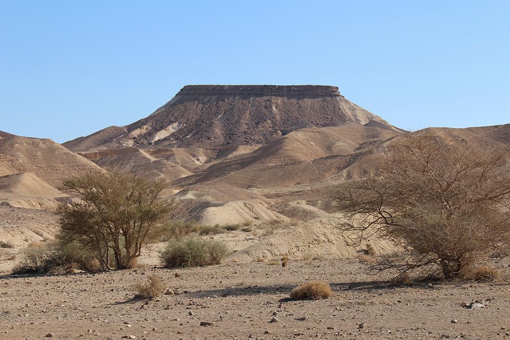 Magnifique paysage dans le désert.