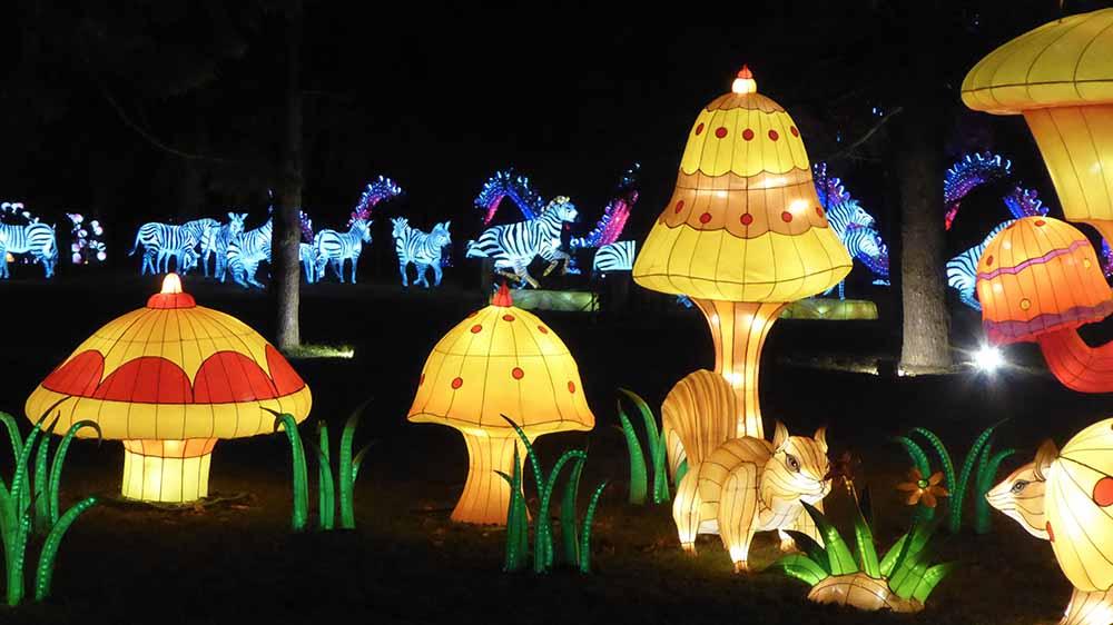 36 tableaux et plus de 500 sujets ou personnages illuminent les nuits du Festival. Un spectacle époustouflant et unique en Europe