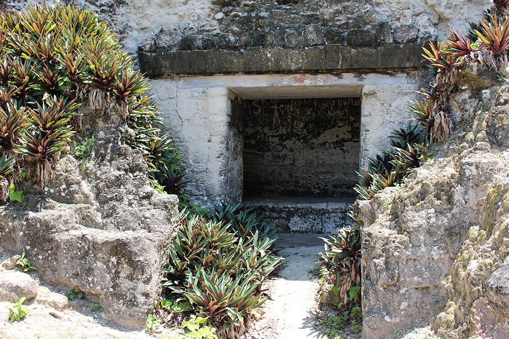 Chambre de constructions Mayas
