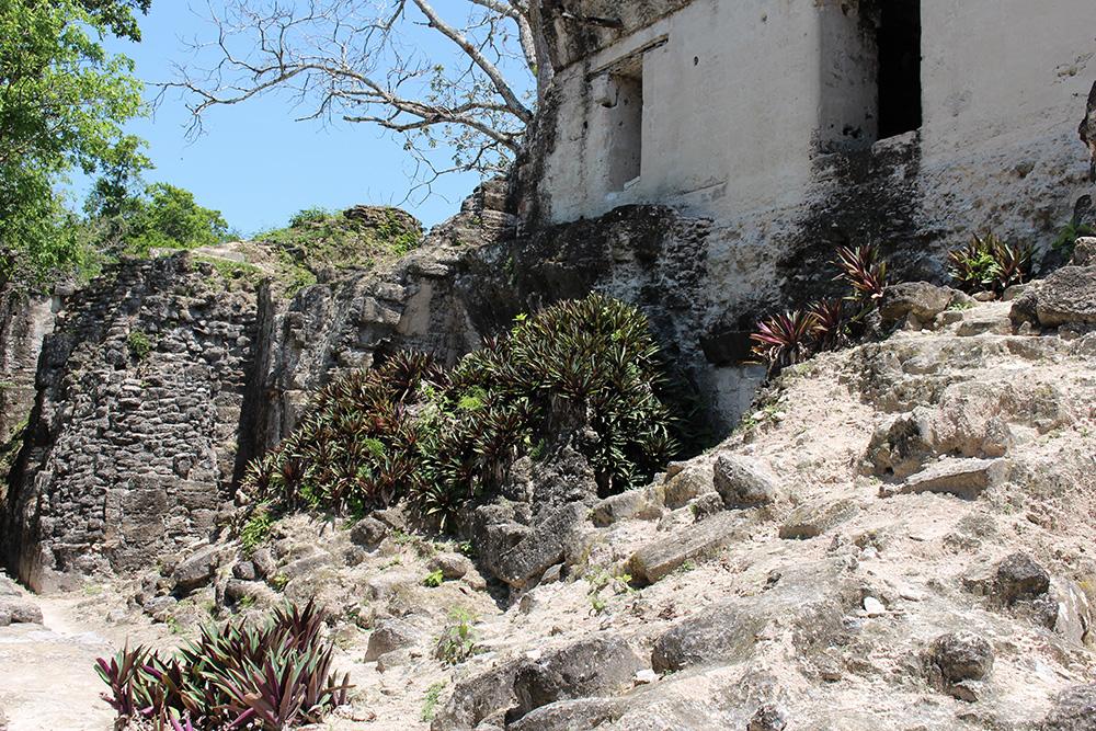 Constructions Mayas