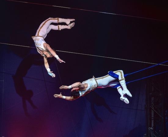 Après Grenoble, la tournée « Surprise » du Cirque d'Hiver Bouglione passera, entre autres, par Bourg-en-Bresse, Limoges, Le Mans ou encore Rennes.