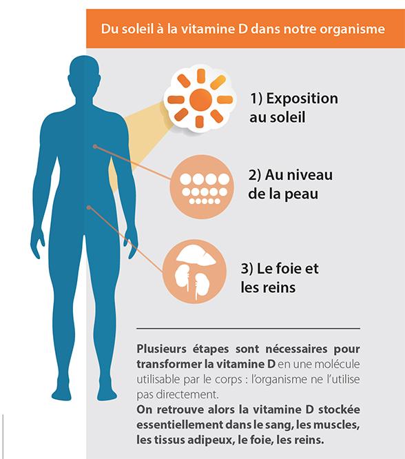 UVB et Vitamine D