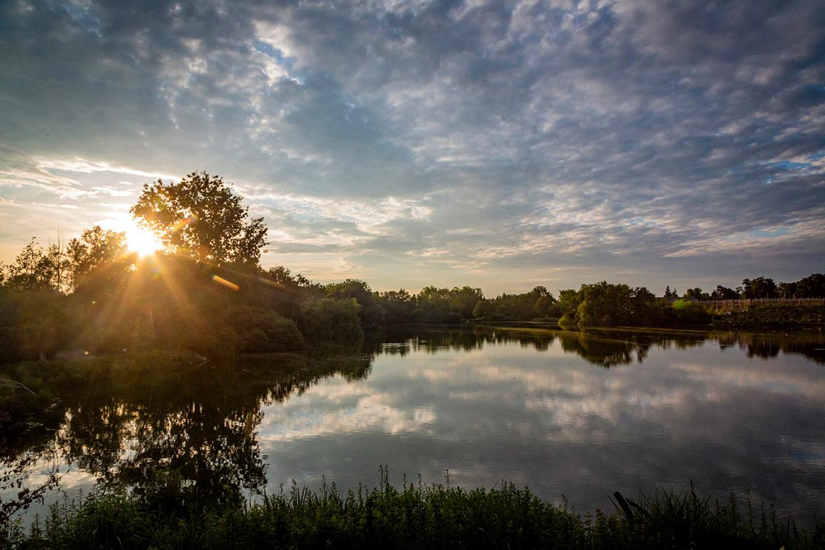 Le Parc des Oiseaux tourne autour d'un vaste étang sur 35 hectares.