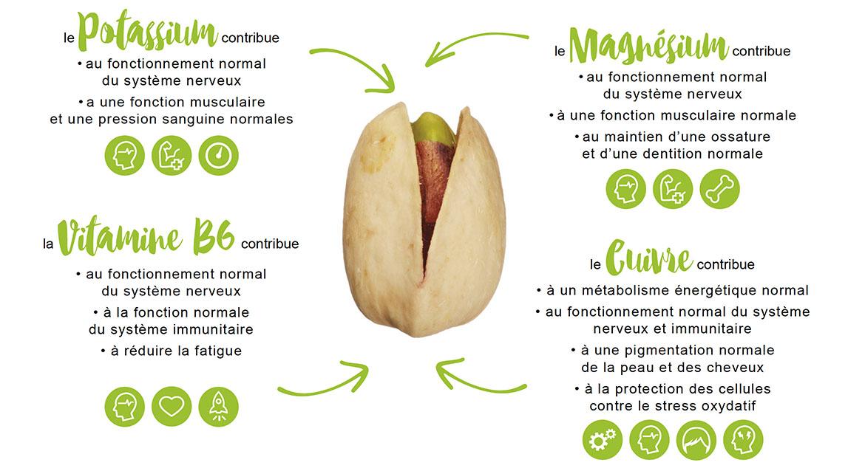 Les pistaches sont bonnes pour la santé