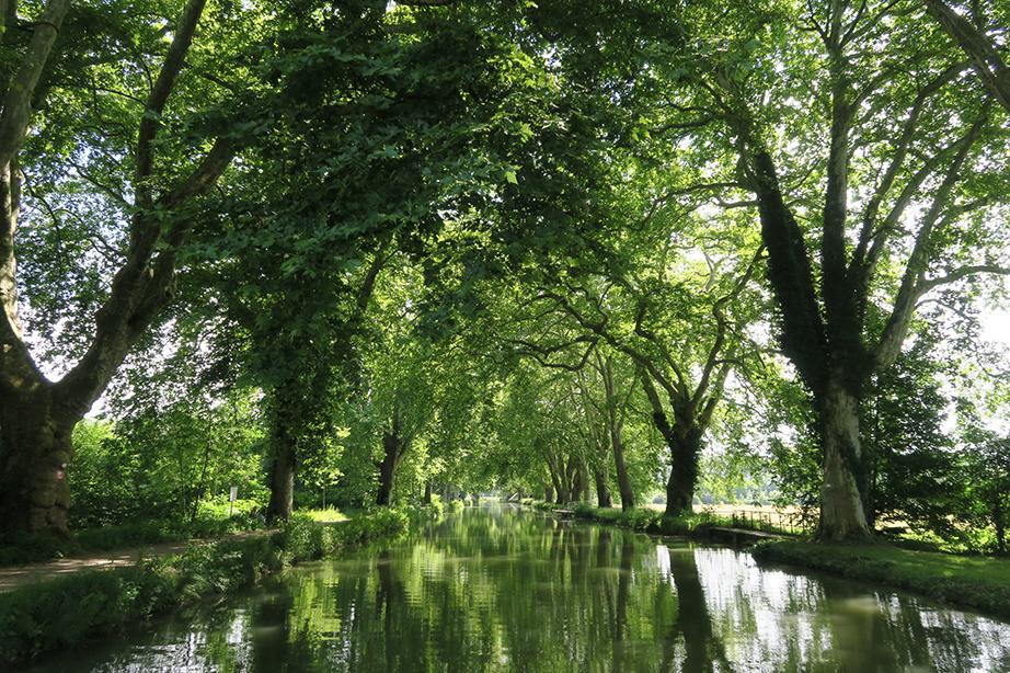 Rivière de Dole