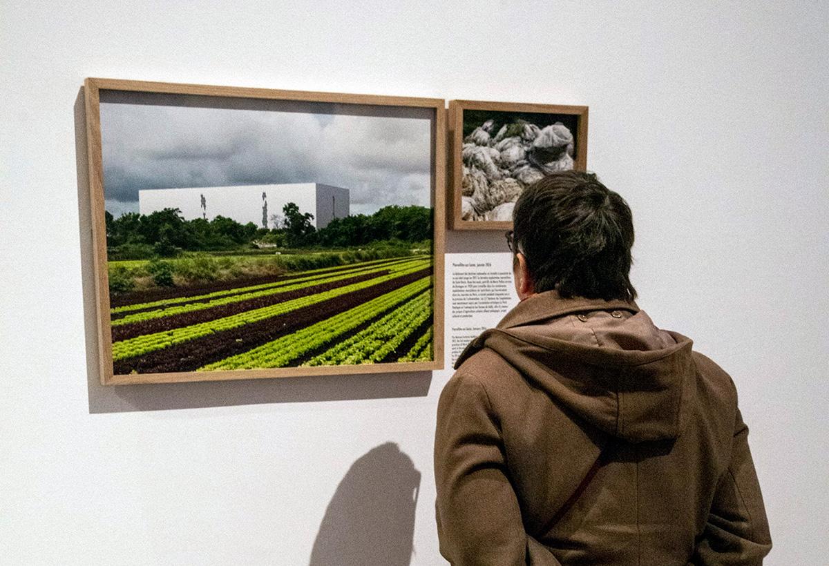 Les paysages de Geoffroy Mathieu.