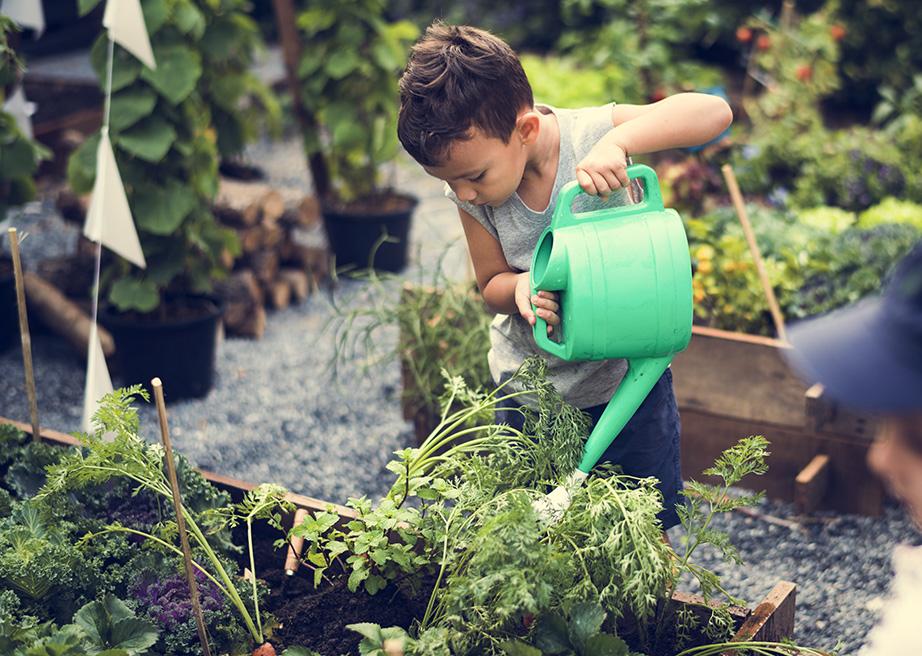 Enfant qui arrose des plantes