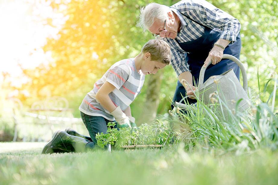 Grand-père et enfant qui jardinent