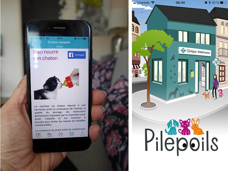 Pilepoils