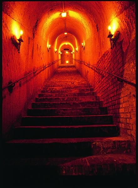 Escalier de la cave Maison Gosset
