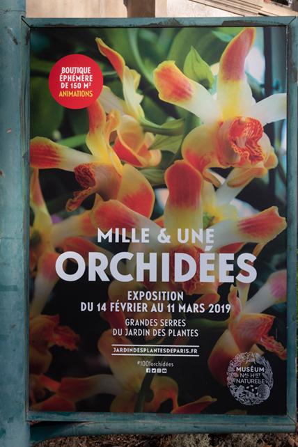 Orchidées Expo
