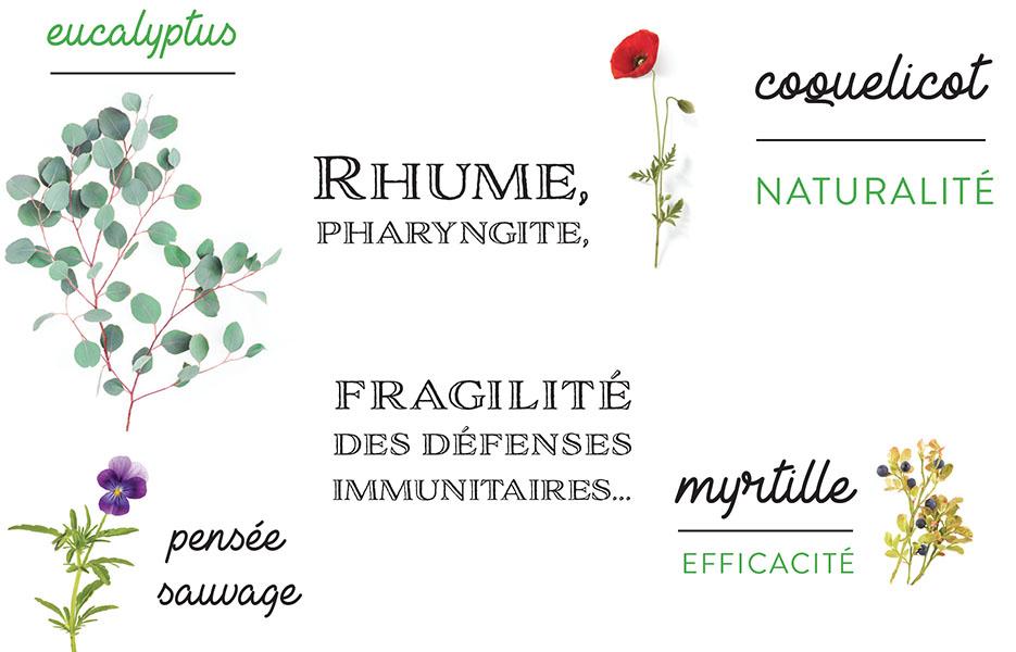 Plantes naturelles