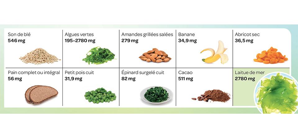 Légumes contenant du magnésium