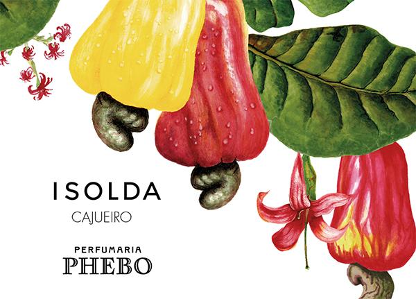 Cajueiro, parfum brésilien