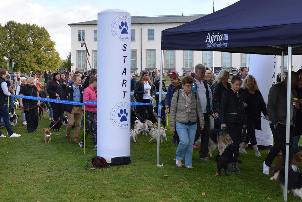 Agria Dog Walk