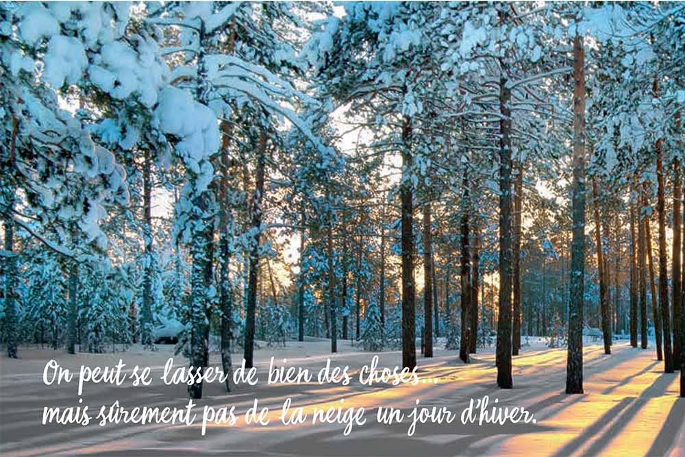 Yves Rocher : Ode à la Nature