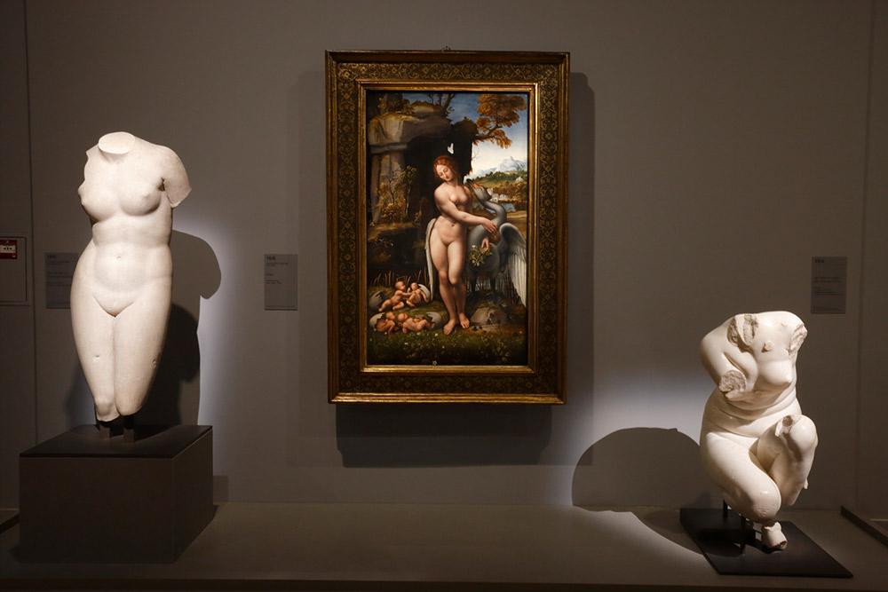 Exposition Léonard de Vinci © Musée du Louvre_Antoine Mongodin _MG_4205