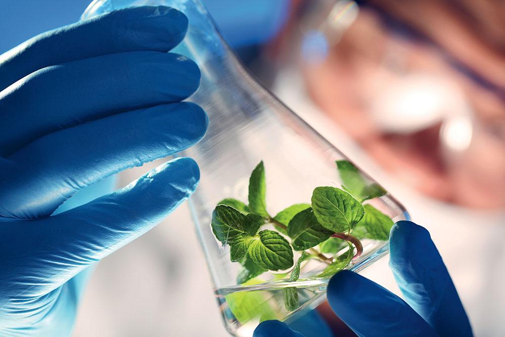 Nutergia : essais en laboratoire