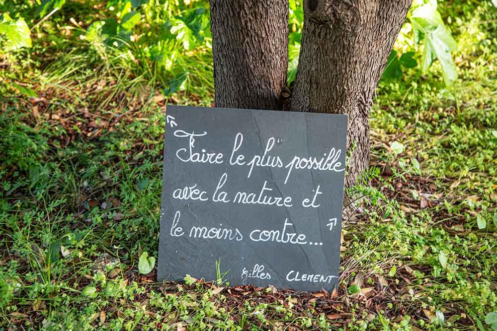 mimosa - C'est le jardinier, paysagiste, botaniste, biologiste et écrivain Gilles Clément qui a réhabilité le Domaine du Rayol.