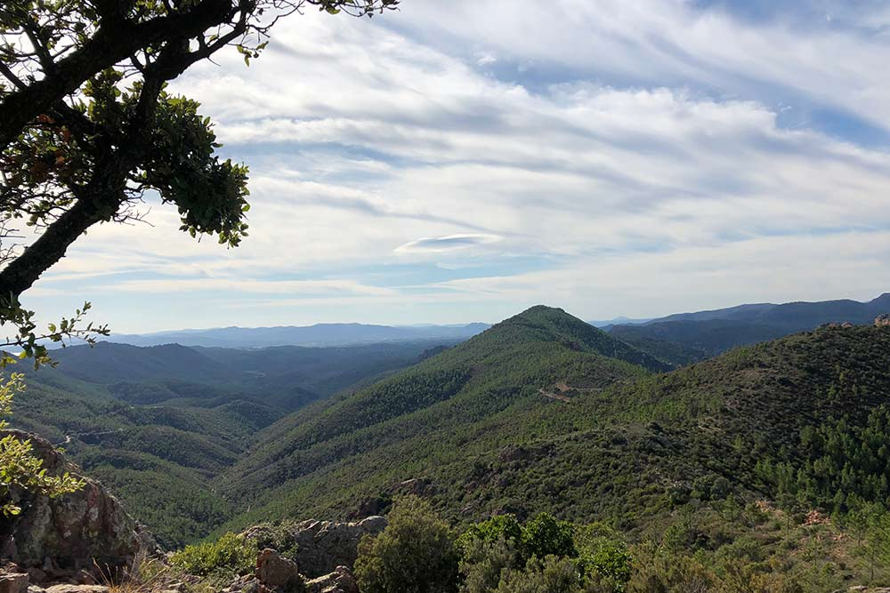 Esterel Côte - d'Azur : Vue du Pic d'Aurèle