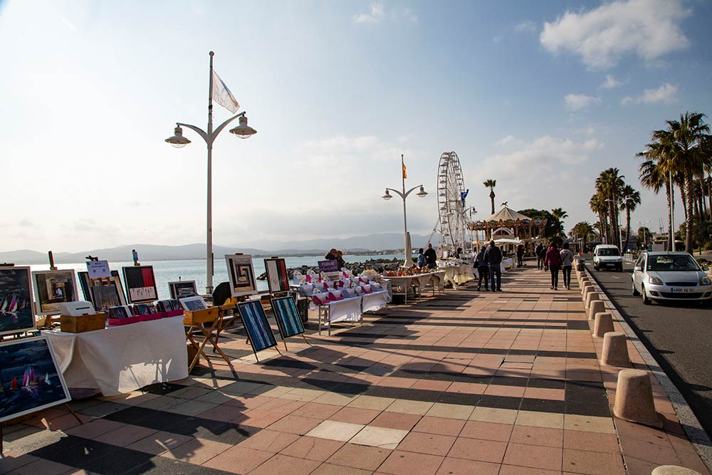 mimosa - Promenade le long des plages.