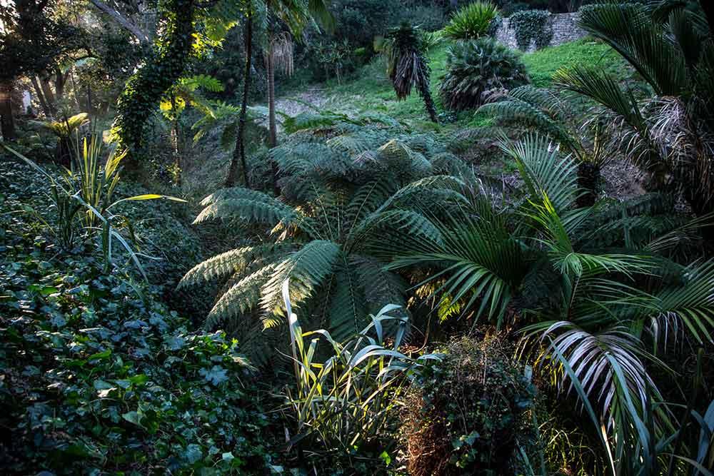 Des jardins d'ambiance…