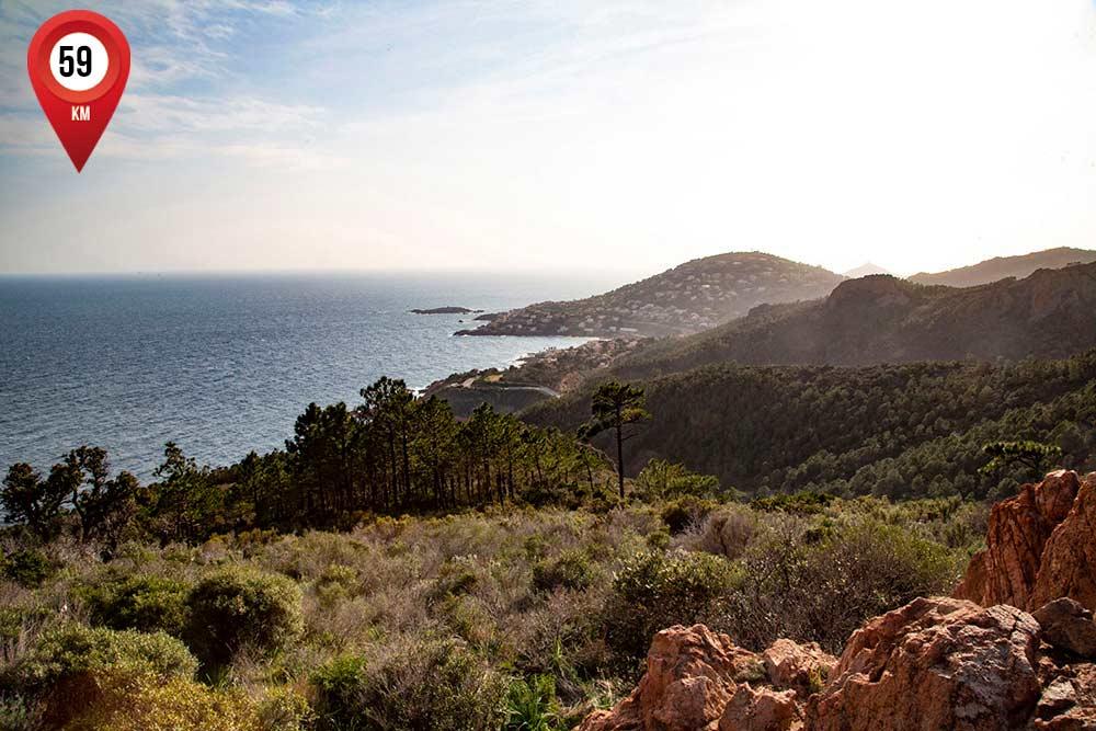 mimosa - La côte de Saint-Raphaël vue du Massif de l'Estérel.