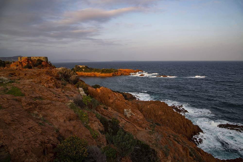 mimosa - La Corniche d'or, entre roches rouges et littoral.