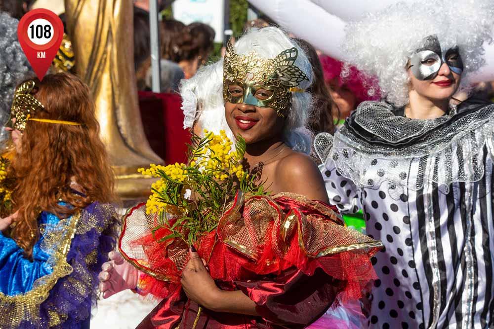 mimosa - Un événement très attendu à Mandelieu-la Napoule: le corso du mimosa.