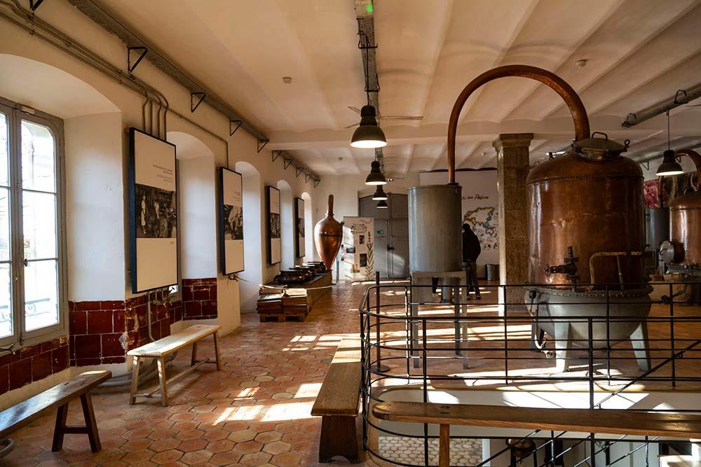 Une belle visite découverte au cœur de l'usine Fragonard.