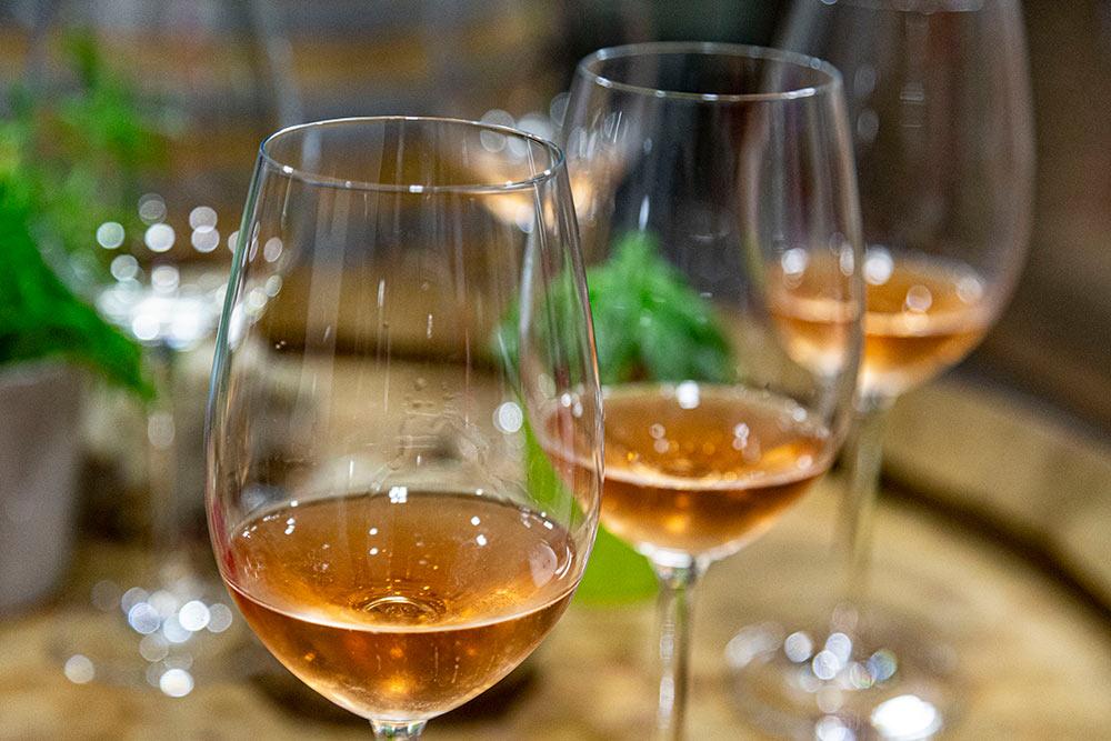 Passez y pour déguster les différents vins proposés par le Domaine.