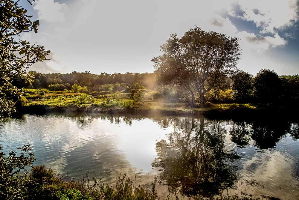 Les - Sables -d'Olonne : Les marais des Sables d'Olonne: une bonne bouffée d'oxygène.