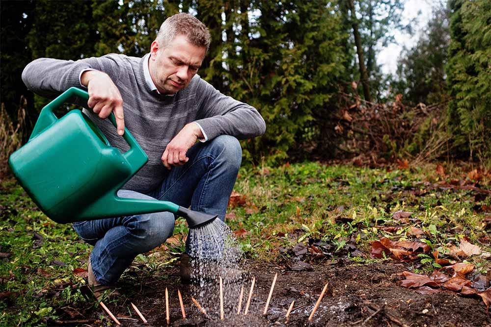 Michael Stausholm plante des crayons
