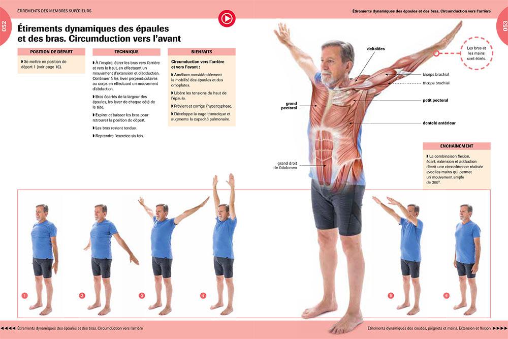 Gymnastique - Etirements dynamiques des épaules et des bras.