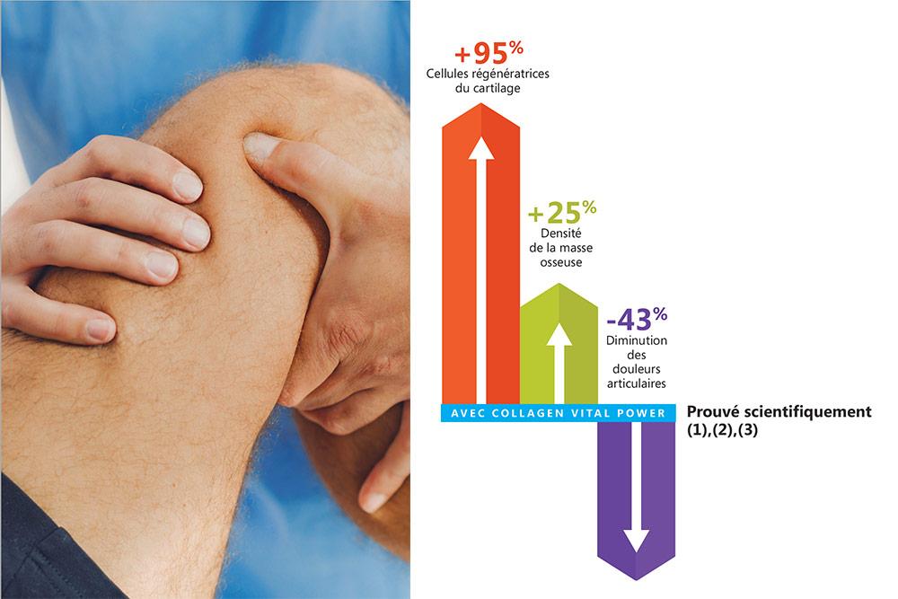 Collagen Vital Power traite les problèmes musculaires