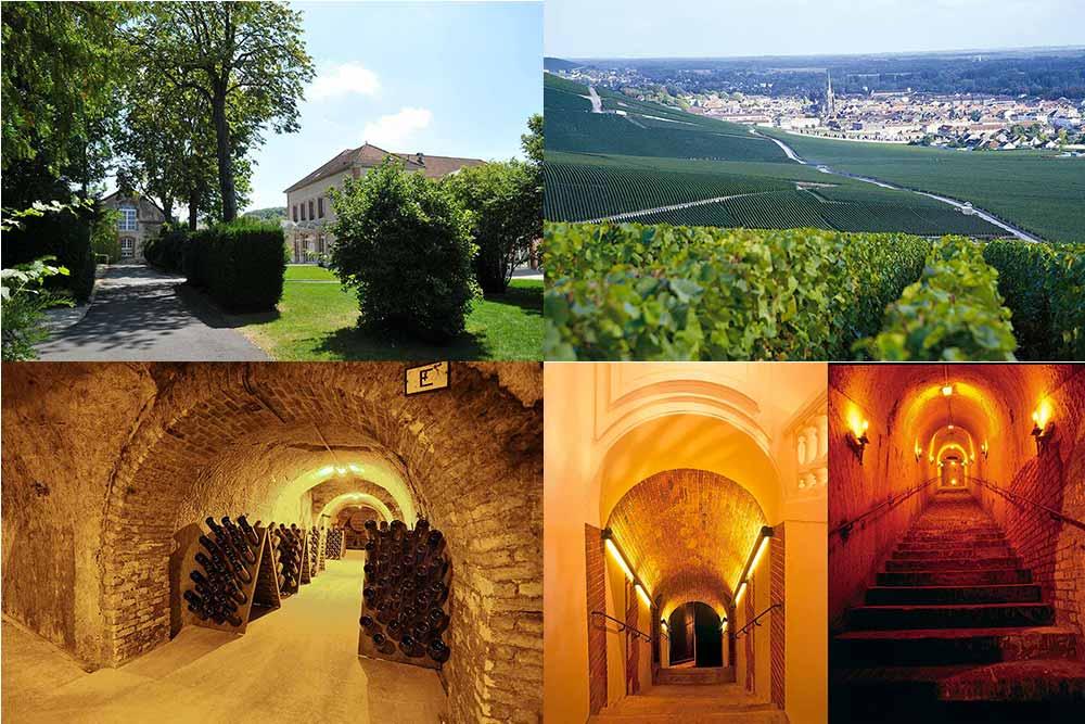 Maison Gosset : Demeure, Vignoble et cave