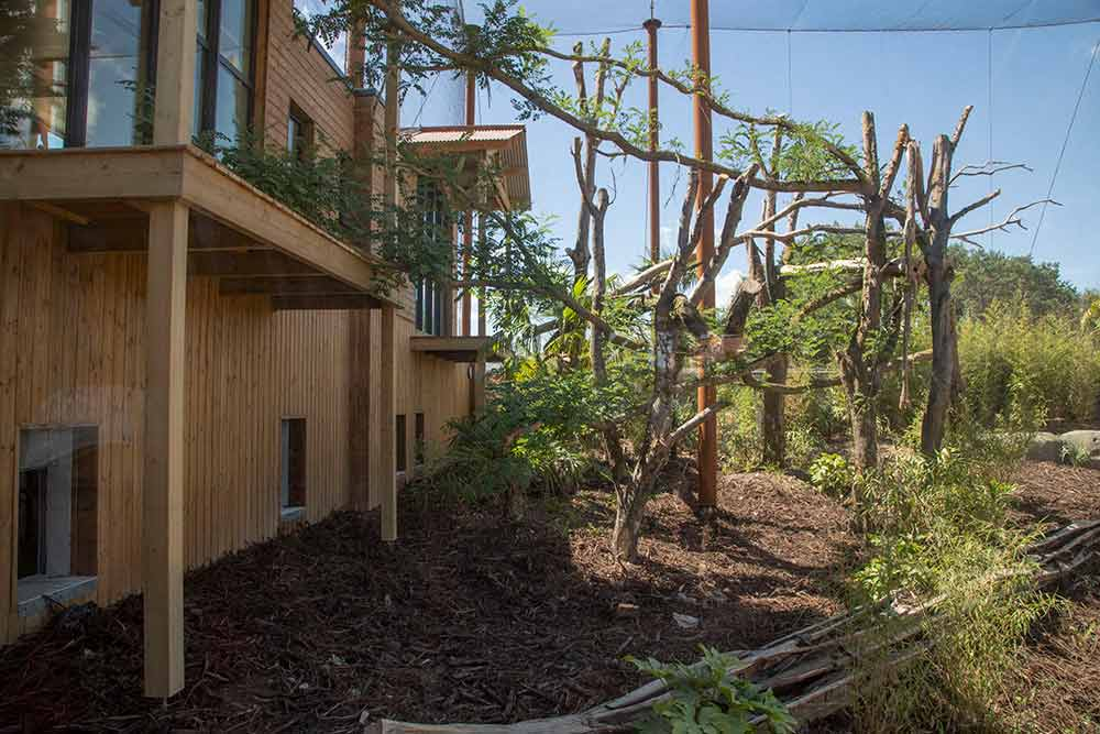 Parrot World - Deux lodges donnent directement dans l'enclos des jaguar…