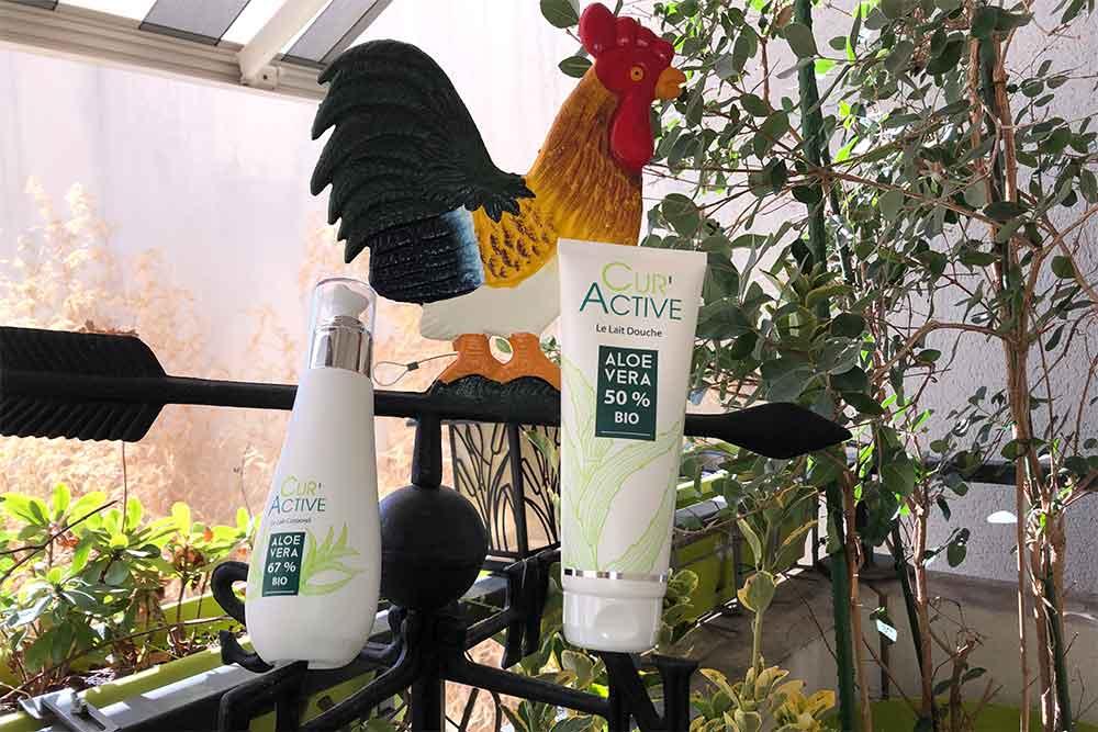 Aloe vera bio - Lait douche et lait corps