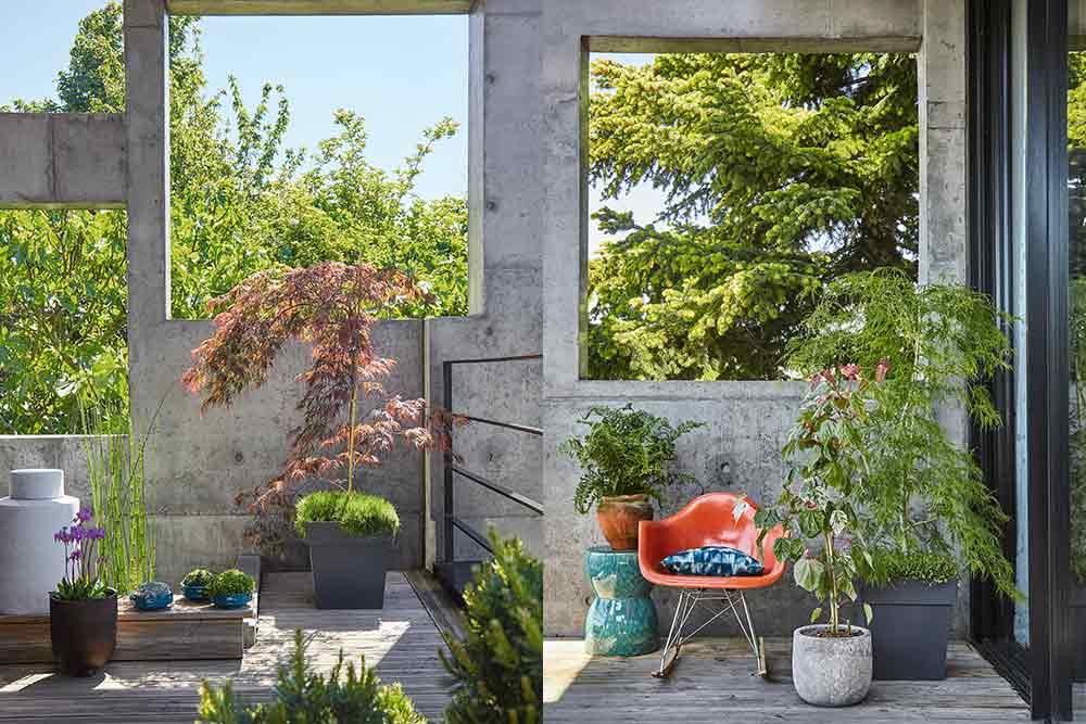 Oasis - urbaine pour mettre de la verdure chez vous