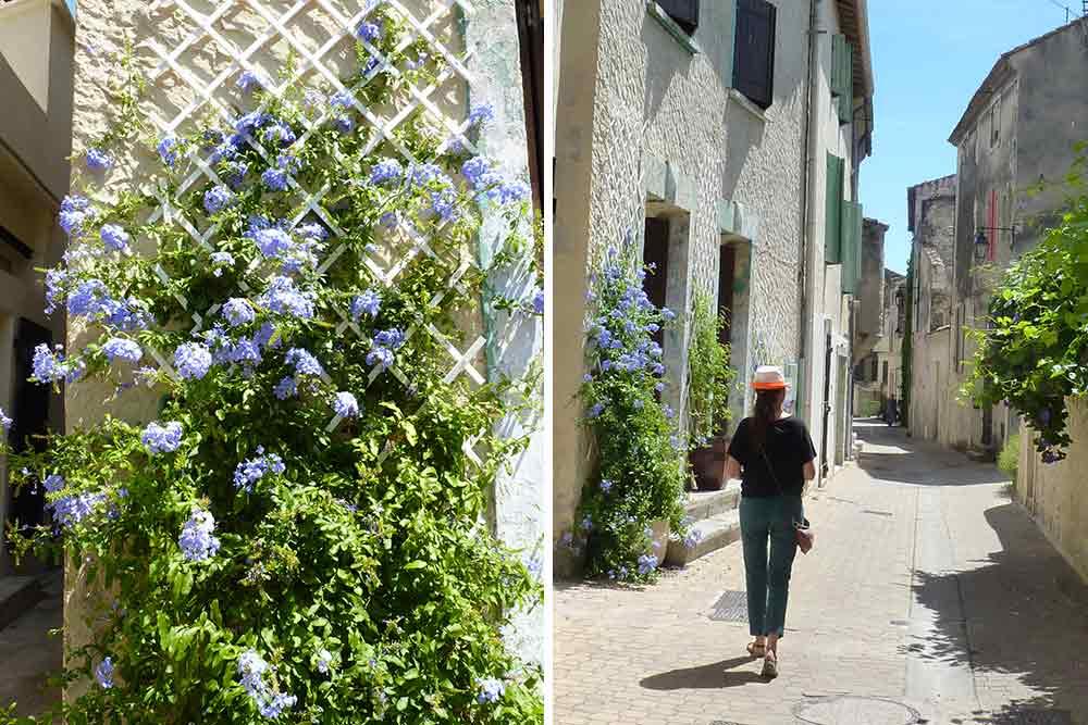 Terre d'Argence - Fleurs et promeneuse dans une rue de Vallabregues