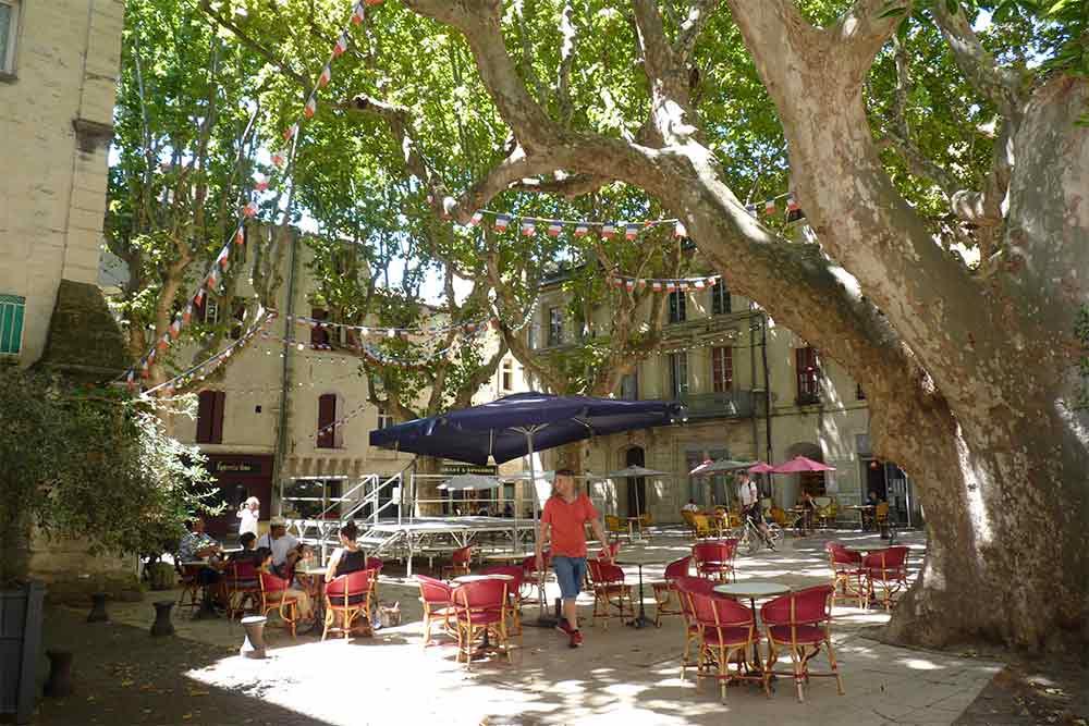 Terre d'Argence - La place de la République avec ses grands arbres et ses cafés