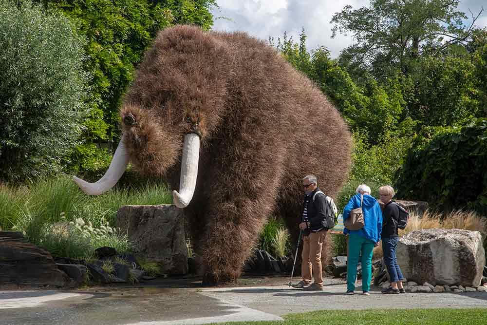 Un mammouth grandeur… nature.