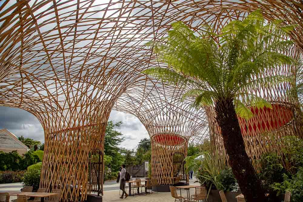 L'Oasis, la plus grande structure en bambous d'Europe.