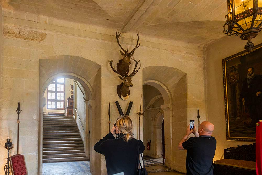 Deux cerfs, valeureux combattants d'une chasse à courre datant de 1895 ont mérité une place d'honneur sur un des murs du château.