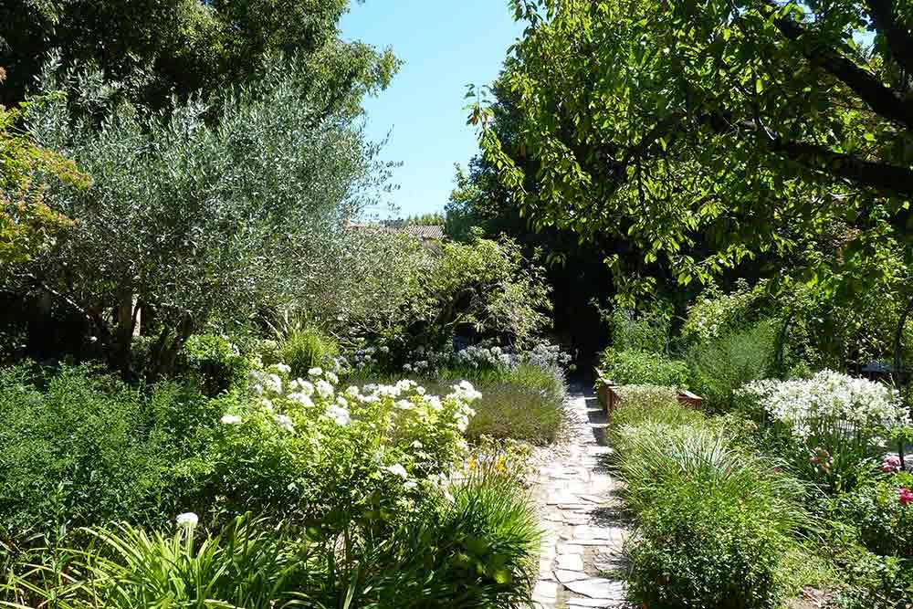 Prieuré Baumanière - Le jardin, riche en floraisons