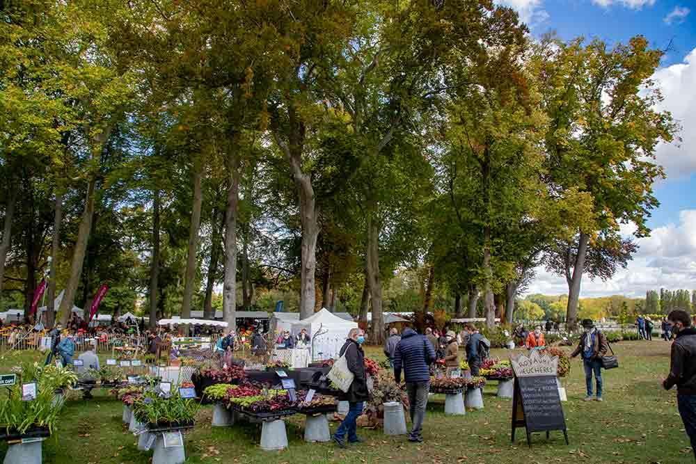 Les plantes sont à l'honneur dans les jardins du Château de Chantilly