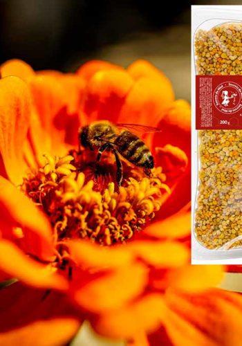 Le Pollen frais de Ciste