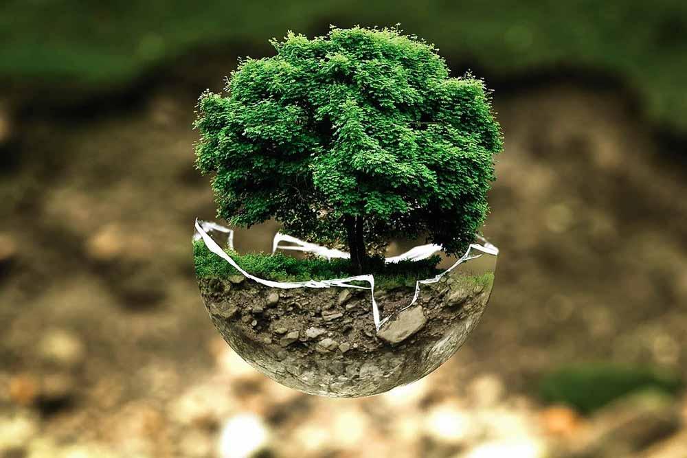 Protégeons la nature car elle le mérite.