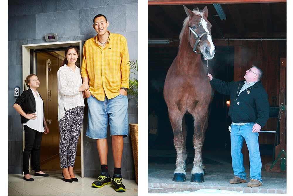 Le Guinness World Records - Le plus grand couple marié (p.76). Elle mesure 1,87 m et lui 2,36 mètres. Le plus grand cheval (p.62).